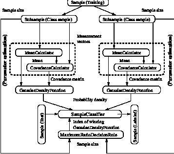 19 Classification
